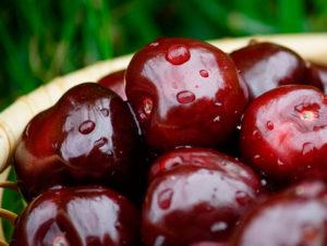 Фрукты и ягоды – залог здоровья вишня