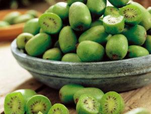 Фрукты и ягоды – залог здоровья киви