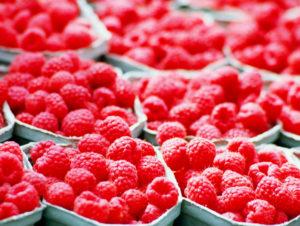 Фрукты и ягоды – залог здоровья малина