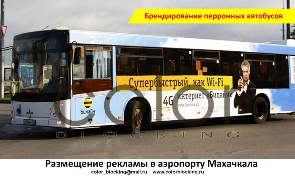 Реклама в аэропорту Махачкала автобусы